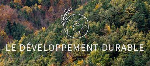 Nous portons une attention particulière à l'impact actuel et futur de nos projets, nous agissons pour une réutilisation optimale des déchets que nous générons, nous sommes très attentifs au choix des matériaux et des essences végétales que nous utilisons et nous considérons la protection et le développement de la biodiversité locale comme un enjeu majeur.