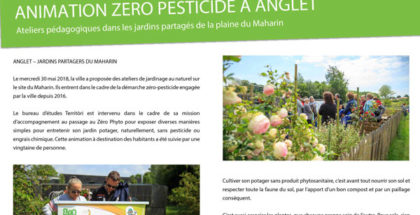 Animation Zéro Pesticide à Anglet