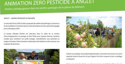 Animation Zéro Pesticide à Anglet